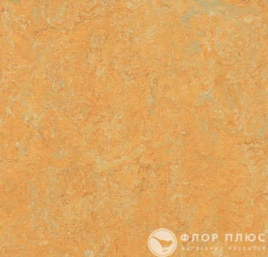 Мармолеум Forbo Marmoleum Fresco Golden saffron